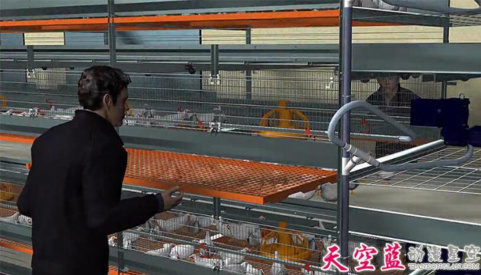 三维鸡笼机械动画制作:层叠式肉鸡笼养系统