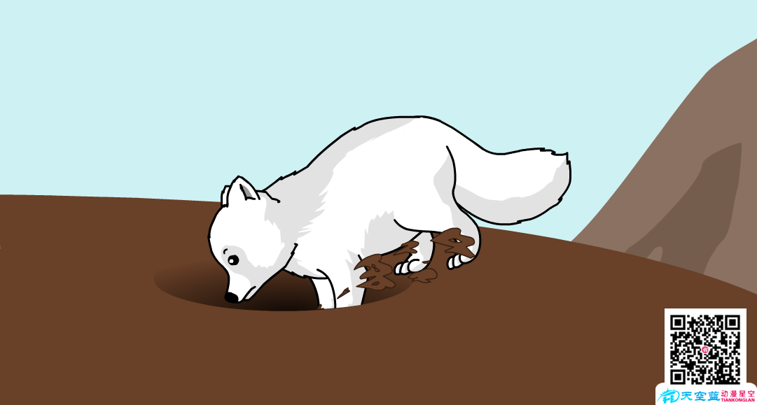 【武汉Flash课件制作】为什么北极狐喜欢挖地窖