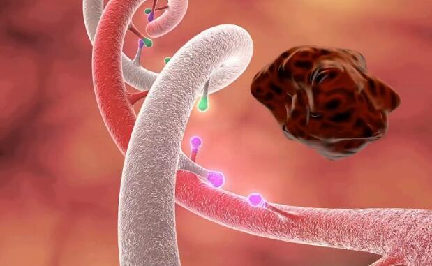 三维医学动画『DNA突变』视频模拟演示制作