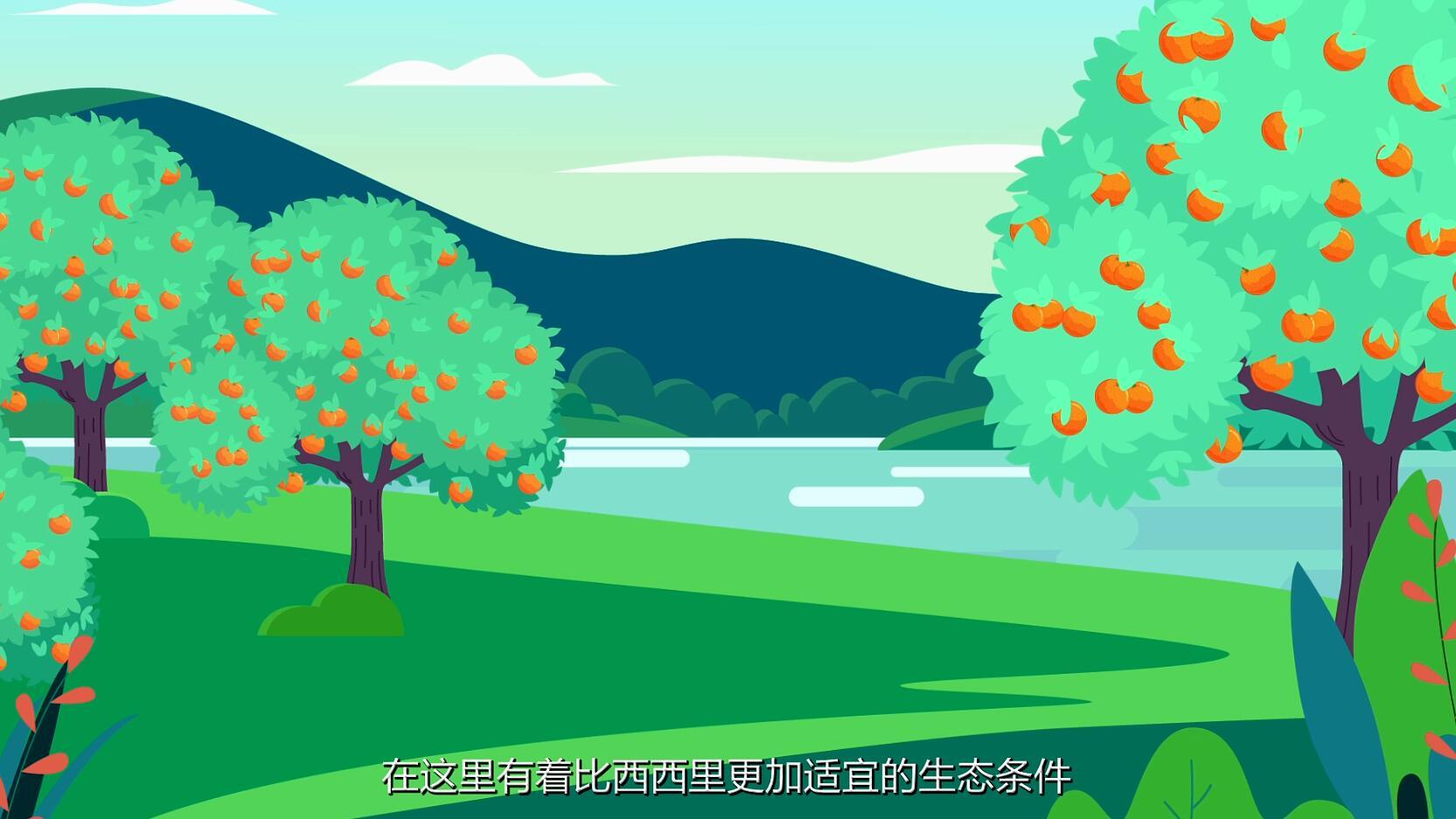 三峡恋橙,橙心诚意4.jpg